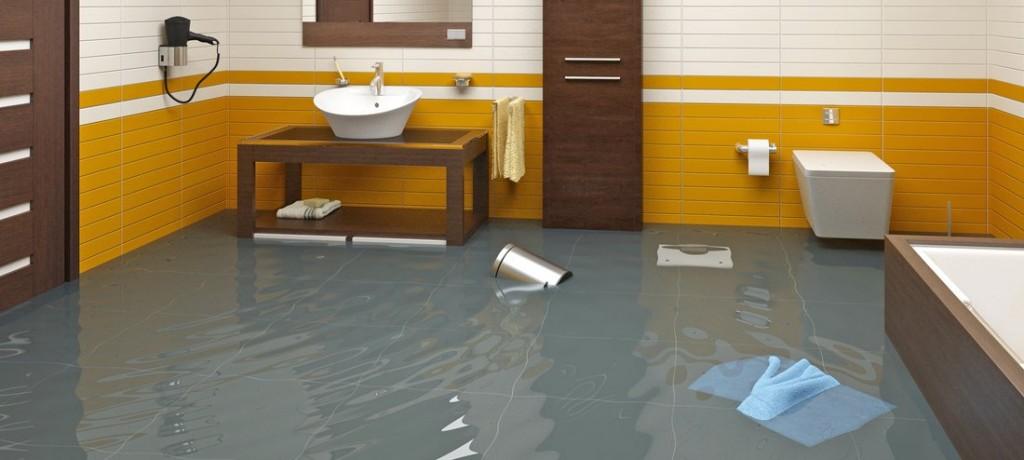 flood home springfield